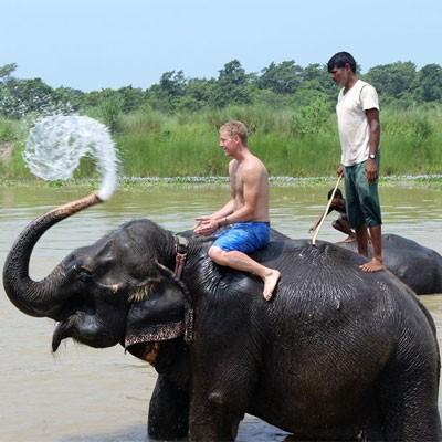 Jungle Safari In Nepal Picture